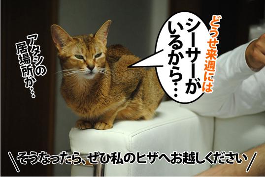 20121109_02.jpg