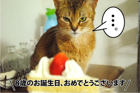 20121120_02.jpg