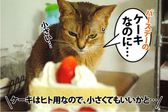 20121120_03.jpg