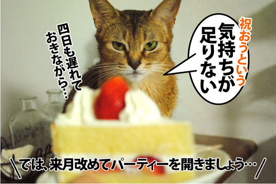 20121120_04.jpg