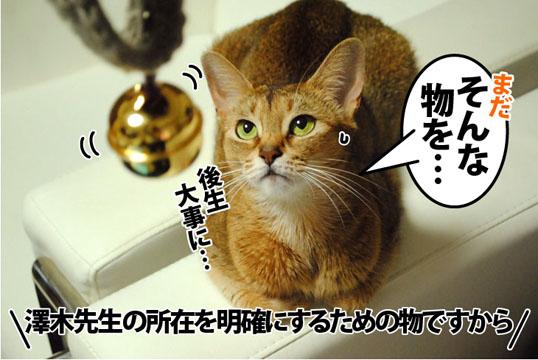 20121121_02.jpg