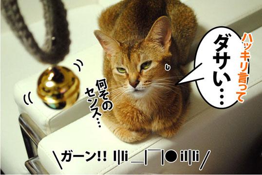 20121121_03.jpg