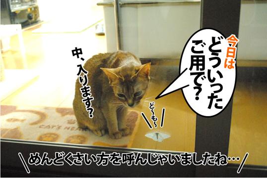 20121123_04.jpg