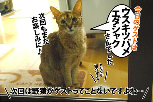 20121123_05.jpg