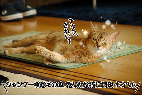 20121124_04.jpg