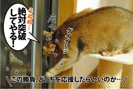 20121129_04.jpg