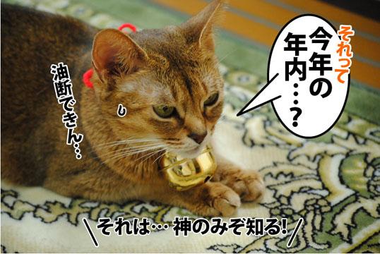 20121203_03.jpg