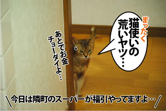 20121212_03.jpg