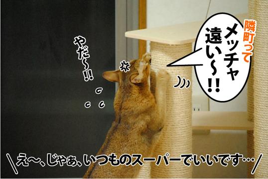 20121212_04.jpg