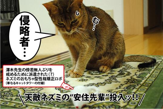 20121213_03.jpg