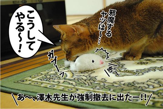 20121213_04_02.jpg