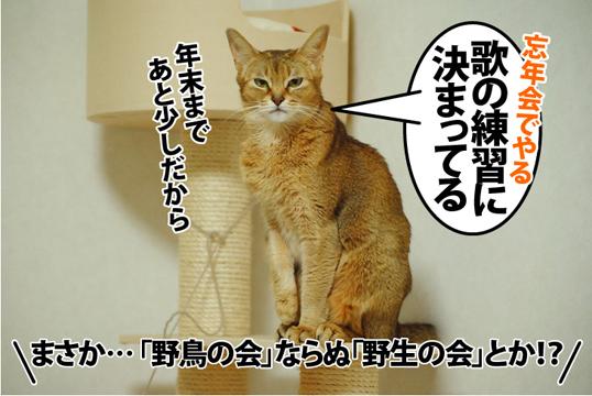 20121215_02.jpg