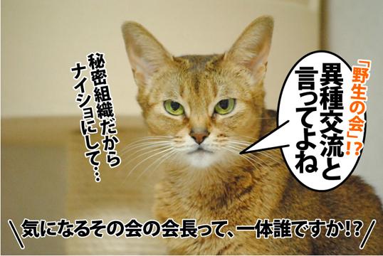 20121215_03.jpg
