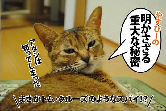 20121219_03.jpg
