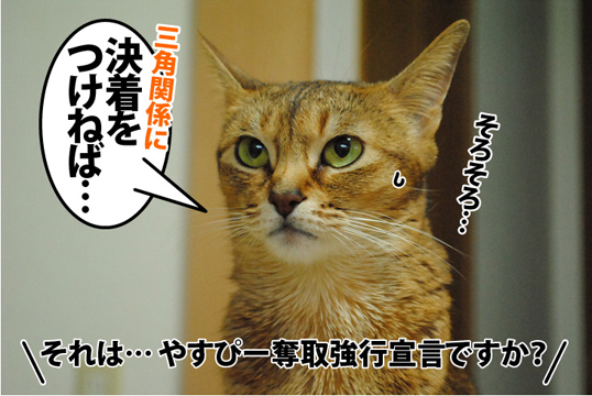 20121221_03.jpg