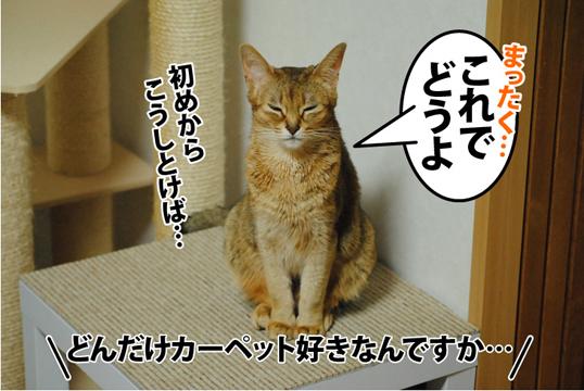 20121223_01.jpg