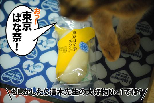 20121228_01.jpg
