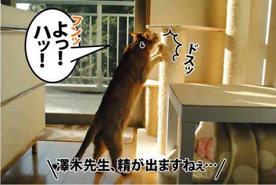 20121230_01.jpg