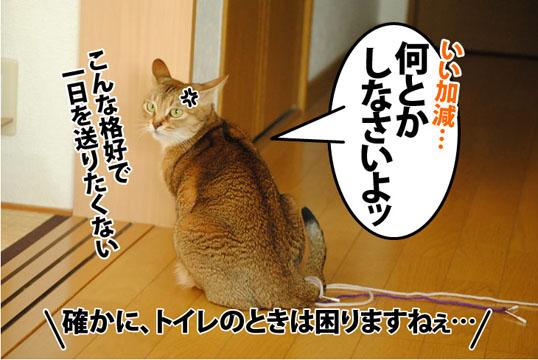 20130124_05.jpg