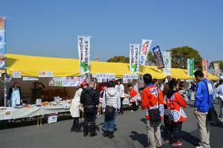 20130309_007.jpg