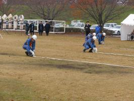 kumagayacity20121117_007.jpg