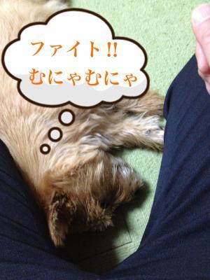蜀咏悄+4+(1)_convert_20130201143649