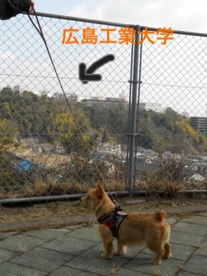 蜀咏悄+2+(6)_convert_20130211184439