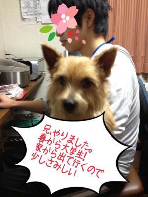 蜀咏悄+(21)_convert_20130307004218