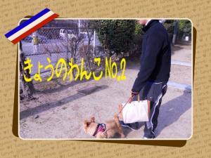 蜀咏悄+1+(2)_convert_20130307095513