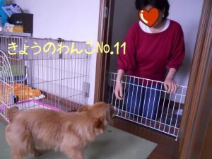蜀咏悄+1+(8)_convert_20130316213026