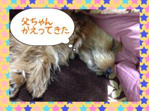蜀咏悄+2+(8)_convert_20130331143059