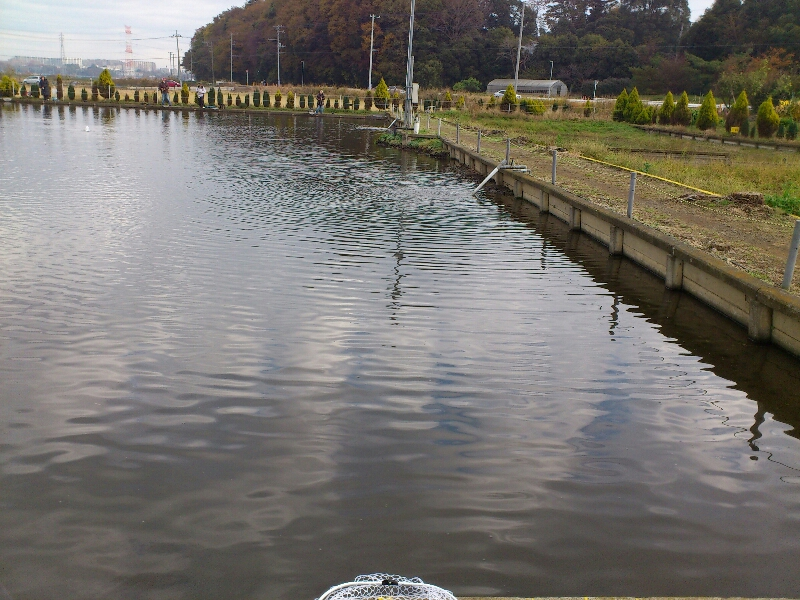 fc2blog_20121202211833ed0.jpg