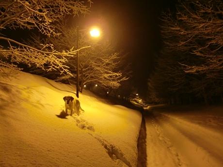 積雪深110cm