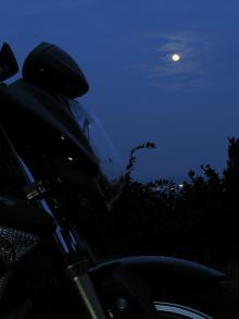 月とおにぎり
