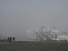 とまの気ままな日記-礼文島 濃霧