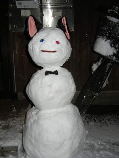 2011/1/16 雪の日