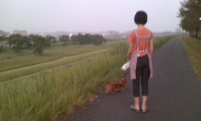 朝5時散歩