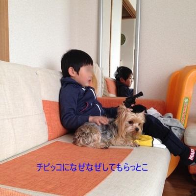 IMG_2770奈良