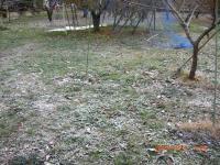H241202初雪