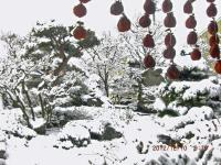 H241210暮の大雪