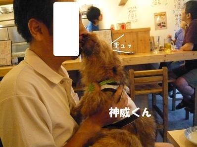 2012_0814_181426-P1060076a.jpg