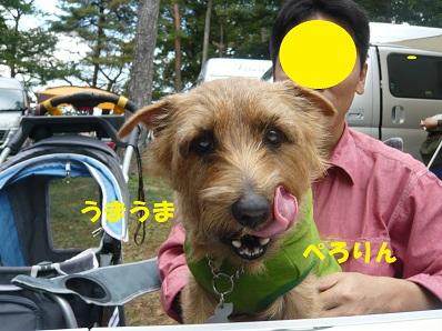 2012_1020_134343-P1060147a.jpg