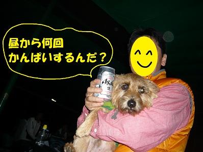 2012_1020_182249-P1060162a.jpg