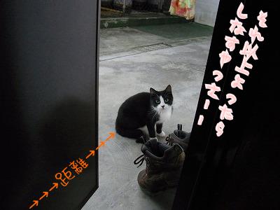 ドア越しのむーちー♪