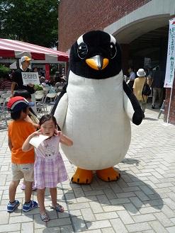 penguino.jpg