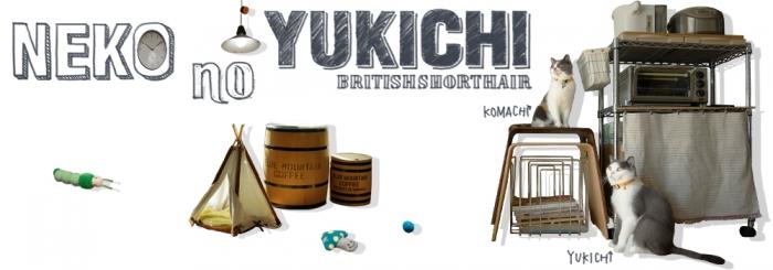 yukichitopimage05