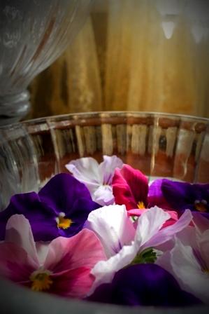 春のお花 (2)