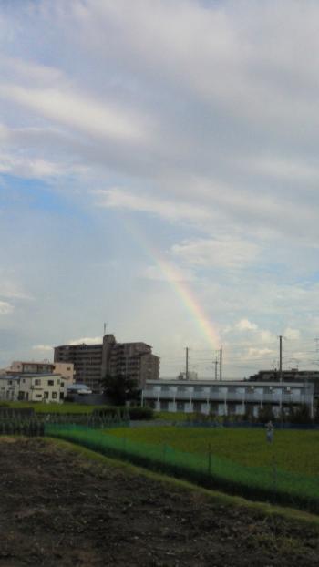 9/1 虹