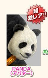 panda777.jpg