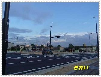 IMGP2427.jpg